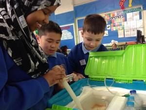 PERM_Classroom_trout_hatchery